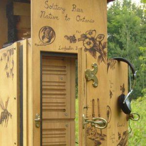 Nest Plank details from Access Alliance Rooftop Garden (photo: Lara Mrosovsky; ID annotations by Scott MacIvor)