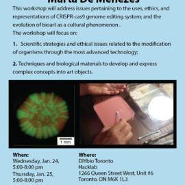 Contemporary Art and Life Sciences  CRISPR-Cas9 technology a workshop with Marta De Menezes, Jan. 24-25